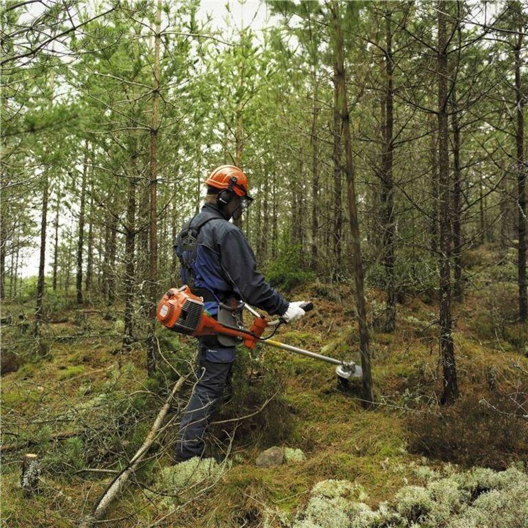 Töö võsalõikajatele Soome