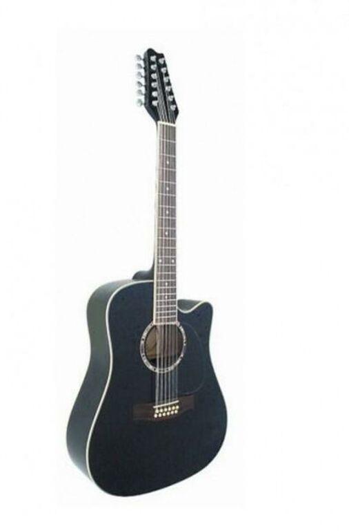12-keelne elektro akustiline kitarr