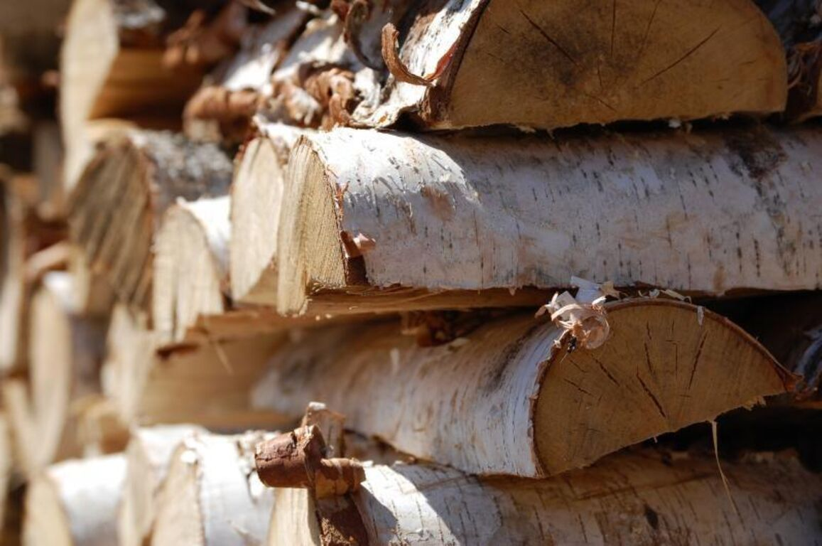 Lõhutud kuiv halupuu küttepuu 30cm ja 50 cm