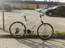 Cycle for Sale/jalgratas müügil