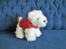 Šoti terjer -suveniir Šotimaalt