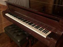 Klaver