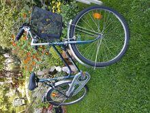 Jalgratas korviga 26 tolli tüdrukule