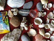 Teokarbid ja kivid akvaariumisse