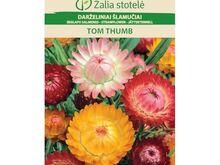 Harilik õlelill Tom Thumb segu 30 seemet