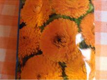 Saialill Orange Gitana 10s.