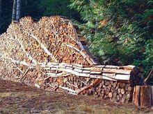 Küttepuud / ahjupuud lehtpuu [Viljadimaa]