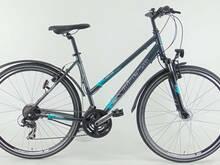 """Naiste jalgratas 28"""" Minerva 21 kiirus hall 53cm"""