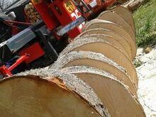 Ohtlikud puud, raie, arborist