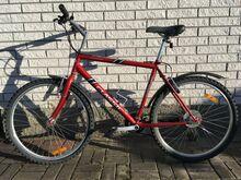 """Jalgratas Classic Legend 26"""" rehvid, L raam"""