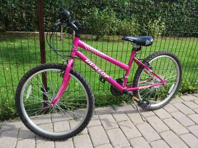 "Jalgratas DUNLOP 24"""