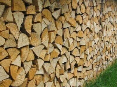 Toored poolkuivad ja kuivad küttepuud