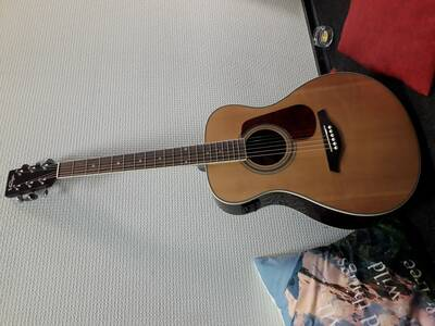 Elektroakustiline kitarr Vintage – VE330N