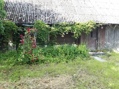 Vana talukoht Saaremaal