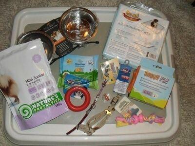 Tarbed väiksele koerale/kassile (uued)