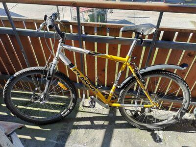 Classic Discovery jalgratas