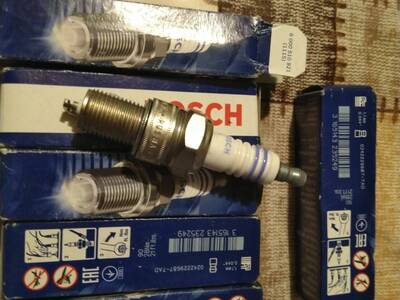 Bosch süüteküünlad